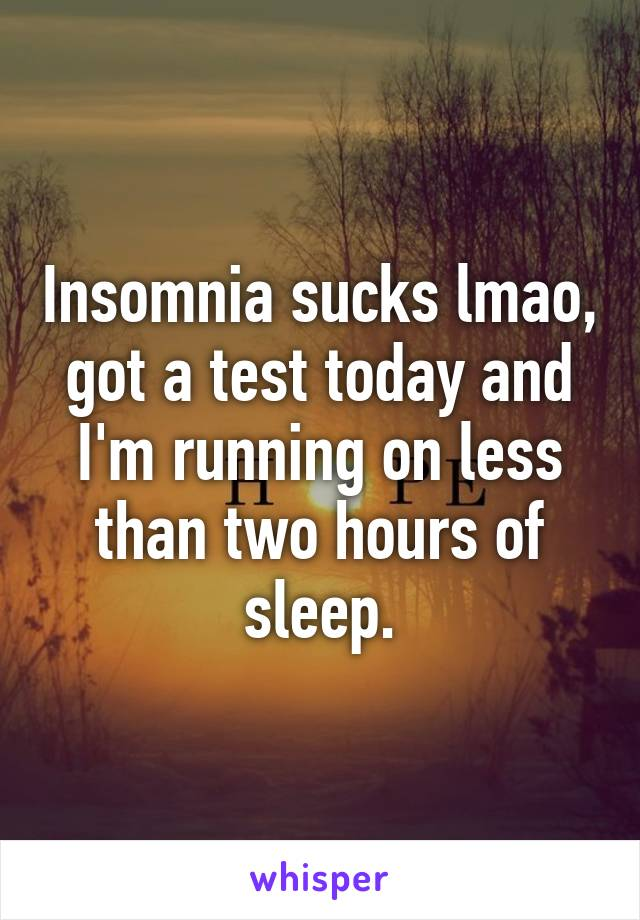 Insomnia sucks lmao, got a test today and I'm running on less than two hours of sleep.