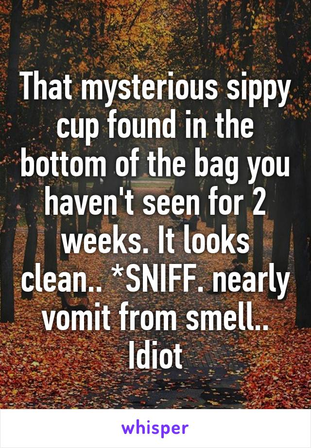 That mysterious sippy cup found in the bottom of the bag you haven't seen for 2 weeks. It looks clean.. *SNIFF. nearly vomit from smell.. Idiot