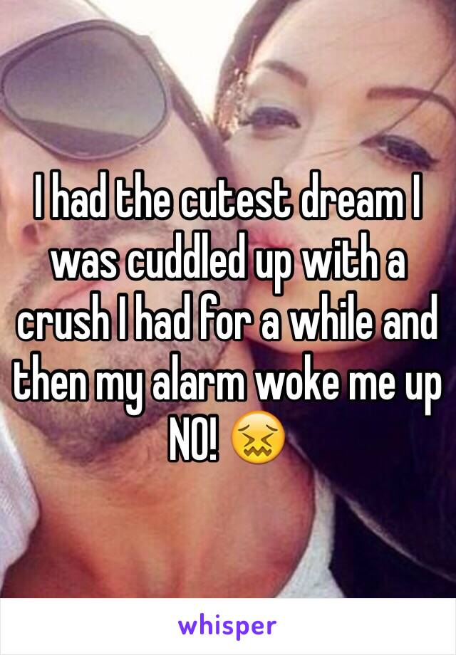 I had the cutest dream I was cuddled up with a crush I had for a while and then my alarm woke me up NO! 😖