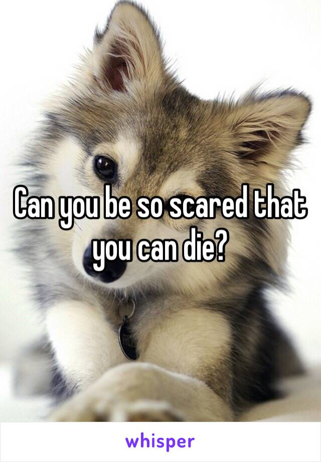 Can you be so scared that you can die?