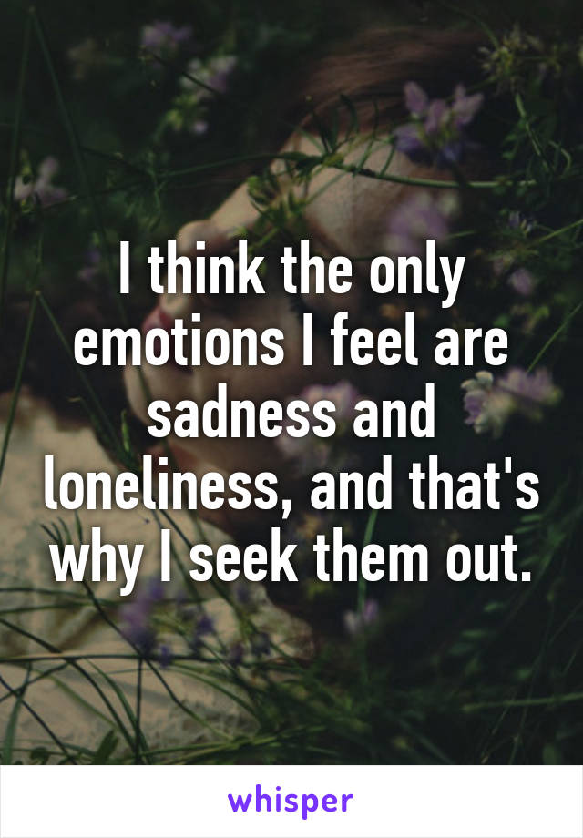 I think the only emotions I feel are sadness and loneliness, and that's why I seek them out.