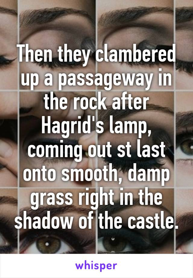 Then they clambered up a passageway in the rock after Hagrid's lamp, coming out st last onto smooth, damp grass right in the shadow of the castle.