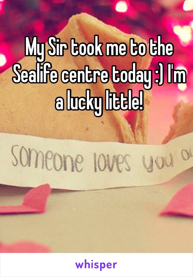 My Sir took me to the Sealife centre today :) I'm a lucky little!