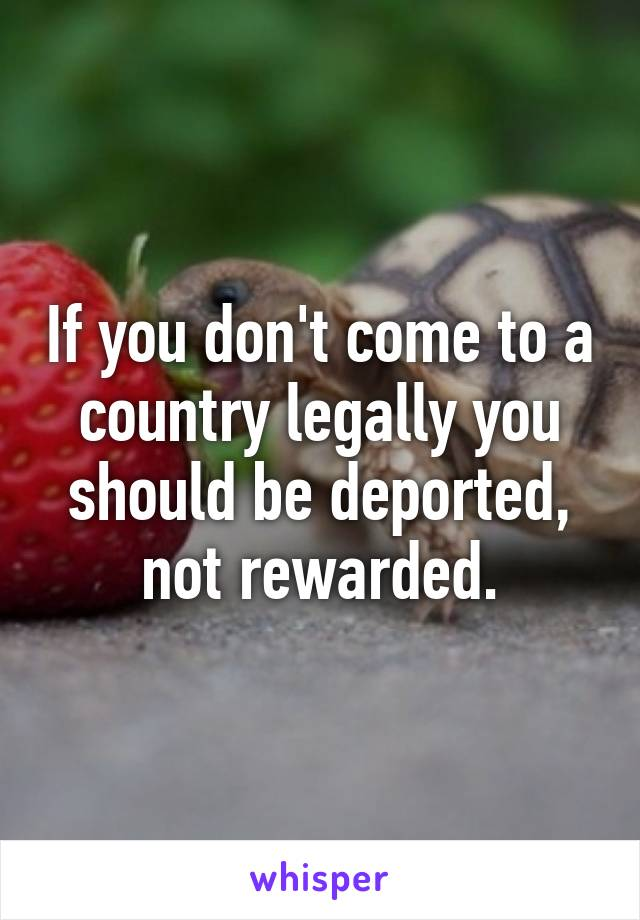 If you don't come to a country legally you should be deported, not rewarded.