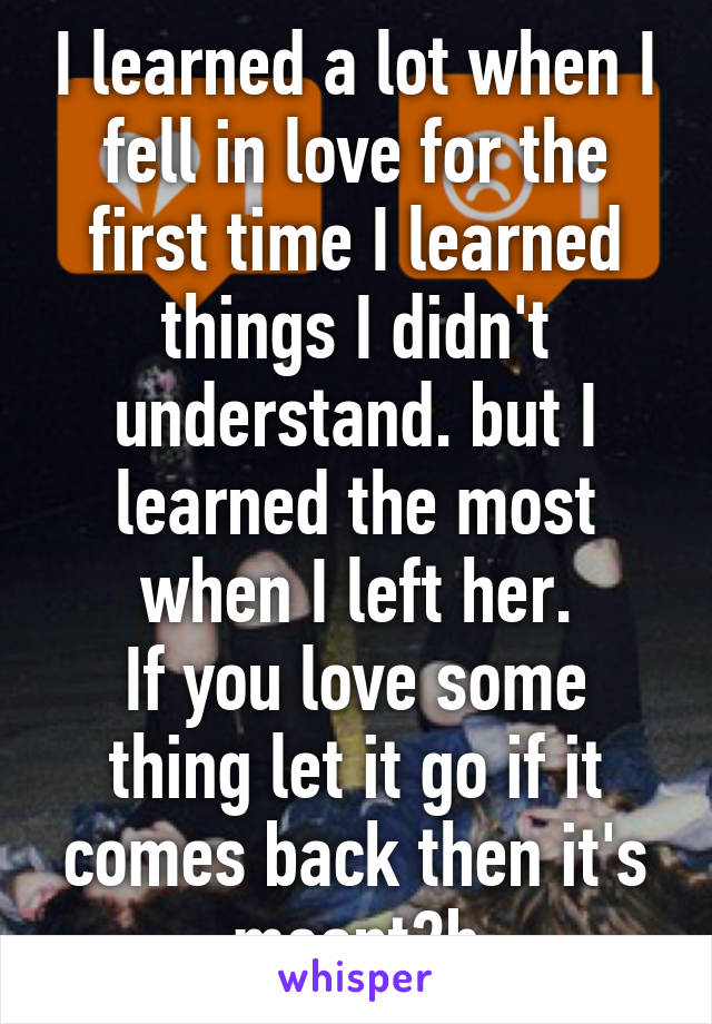 I learned a lot when I fell in love for the first time I learned things I didn't understand. but I learned the most when I left her. If you love some thing let it go if it comes back then it's meant2b