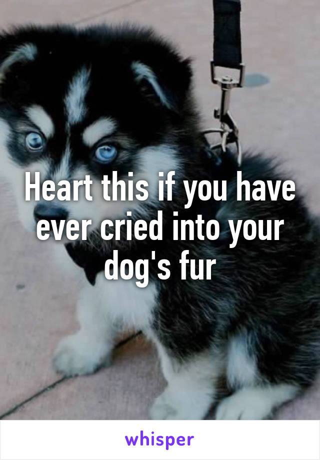 Heart this if you have ever cried into your dog's fur