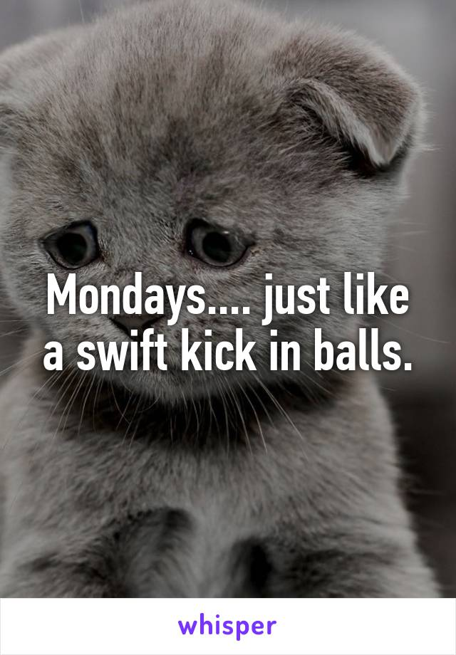 Mondays.... just like a swift kick in balls.