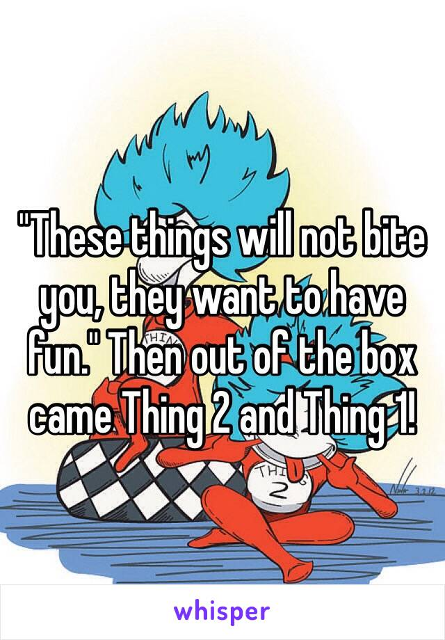 """""""These things will not bite you, they want to have fun."""" Then out of the box came Thing 2 and Thing 1!"""