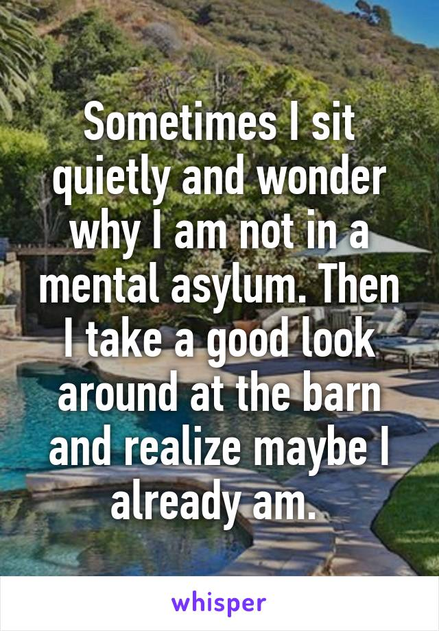 Sometimes I sit quietly and wonder why I am not in a mental asylum. Then I take a good look around at the barn and realize maybe I already am.