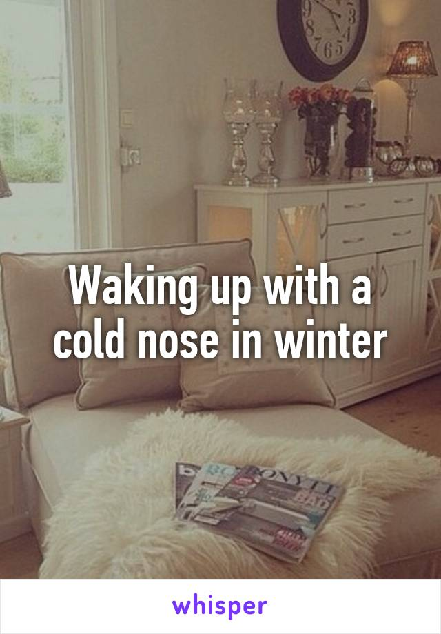 Waking up with a cold nose in winter