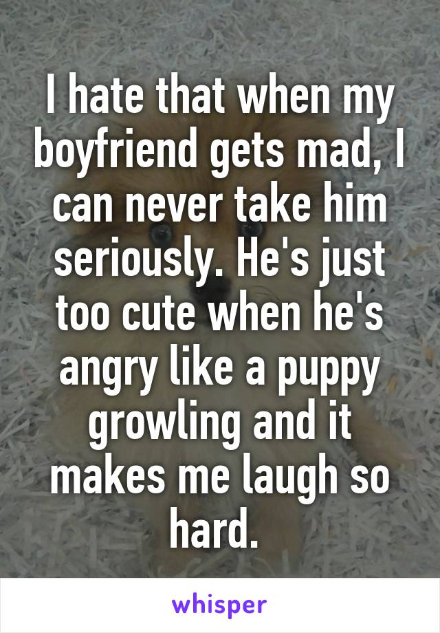 I hate that when my boyfriend gets mad, I can never take him seriously. He's just too cute when he's angry like a puppy growling and it makes me laugh so hard.