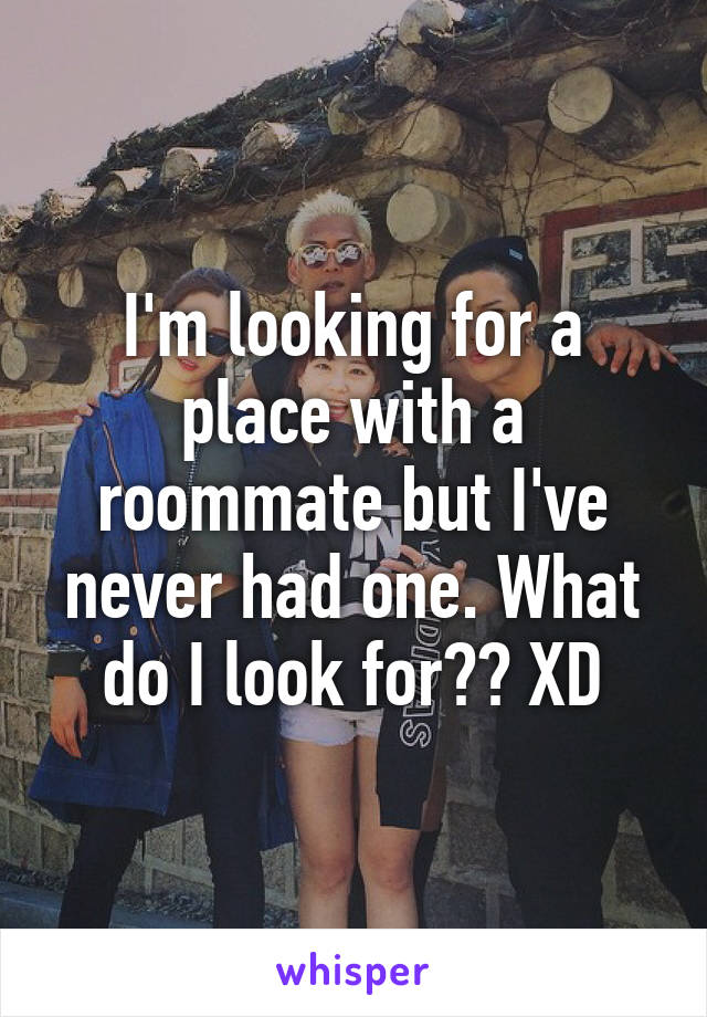 I'm looking for a place with a roommate but I've never had one. What do I look for?? XD