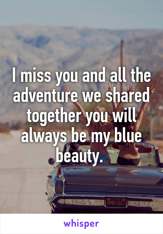 I miss you and all the adventure we shared together you will always be my blue beauty.
