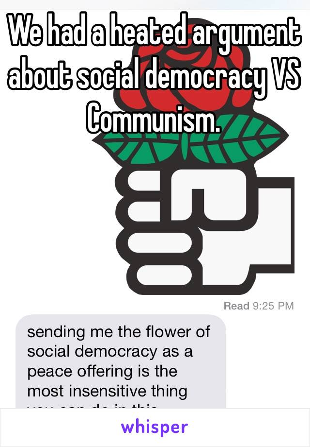 We had a heated argument about social democracy VS Communism.