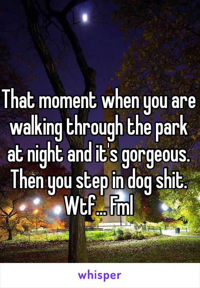 That moment when you are walking through the park at night and it's gorgeous. Then you step in dog shit.  Wtf... Fml