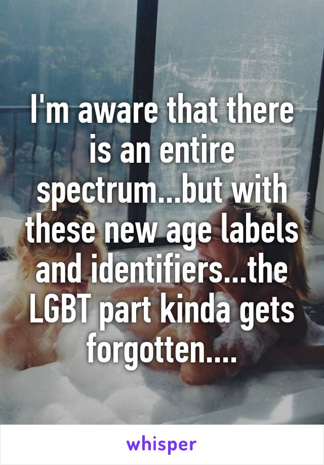 I'm aware that there is an entire spectrum...but with these new age labels and identifiers...the LGBT part kinda gets forgotten....
