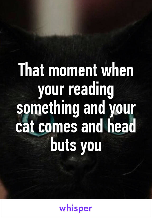 That moment when your reading something and your cat comes and head buts you