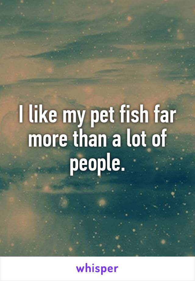 I like my pet fish far more than a lot of people.