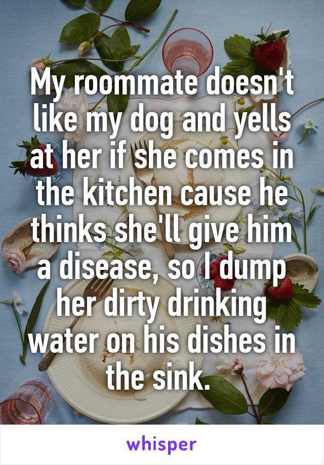 My roommate doesn't like my dog and yells at her if she comes in the kitchen cause he thinks she'll give him a disease, so I dump her dirty drinking water on his dishes in the sink.