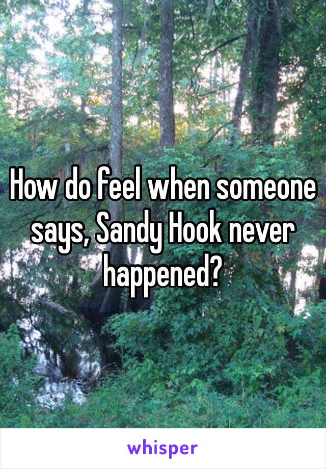 How do feel when someone says, Sandy Hook never happened?