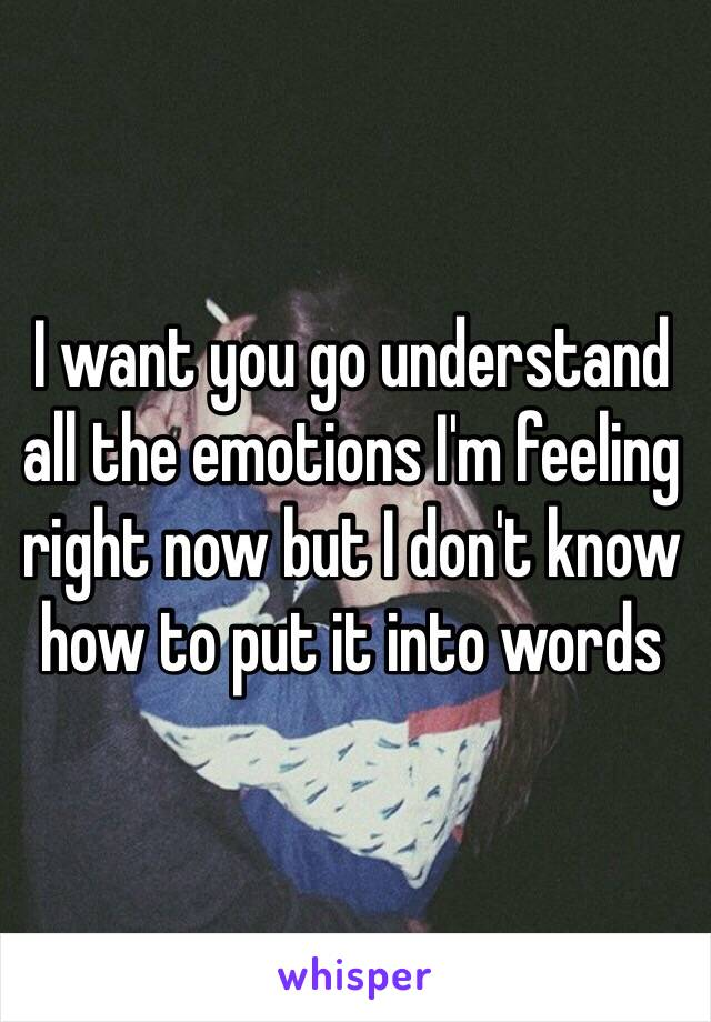 I want you go understand all the emotions I'm feeling right now but I don't know how to put it into words