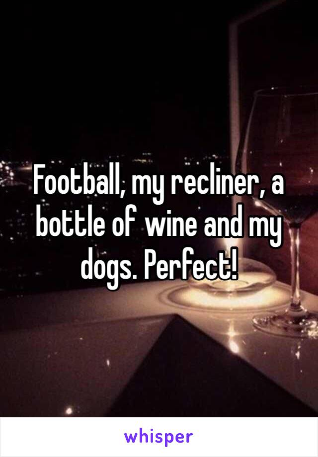 Football, my recliner, a bottle of wine and my dogs. Perfect!