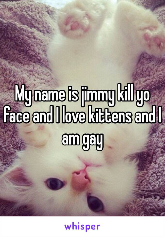 My name is jimmy kill yo face and I love kittens and I am gay