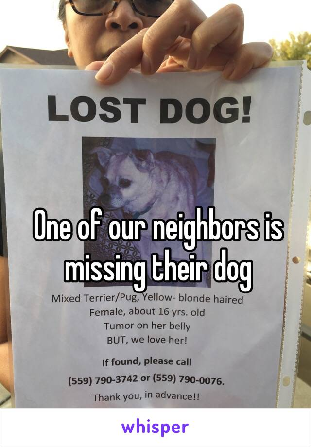 One of our neighbors is missing their dog