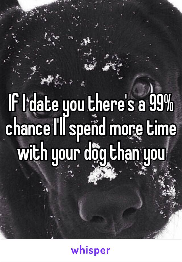 If I date you there's a 99% chance I'll spend more time with your dog than you