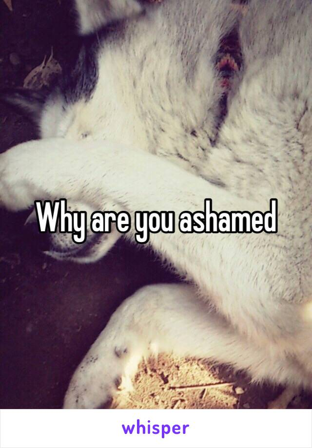 Why are you ashamed