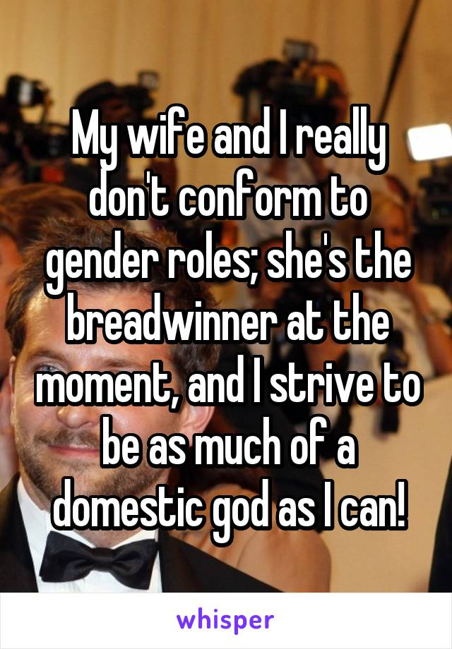 My wife and I really don't conform to gender roles; she's the breadwinner at the moment, and I strive to be as much of a domestic god as I can!