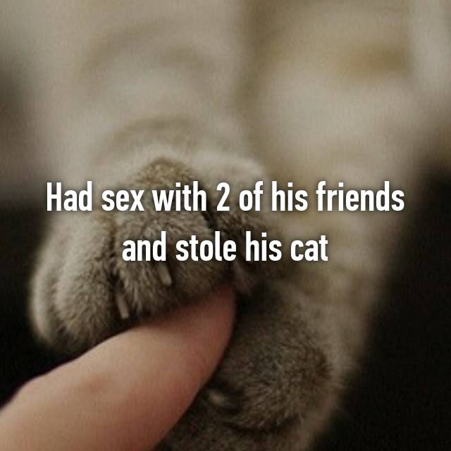 Had sex with 2 of his friends and stole his cat