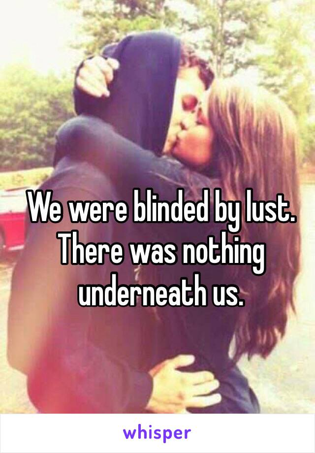 We were blinded by lust. There was nothing underneath us.