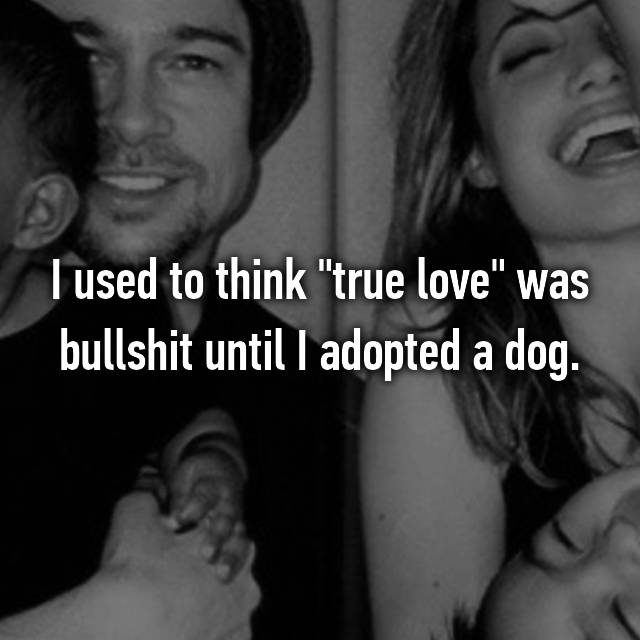 "I used to think ""true love"" was bullshit until I adopted a dog."