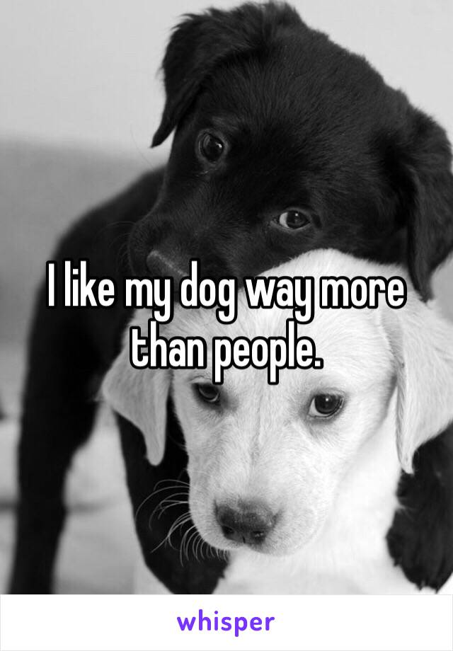 I like my dog way more than people.
