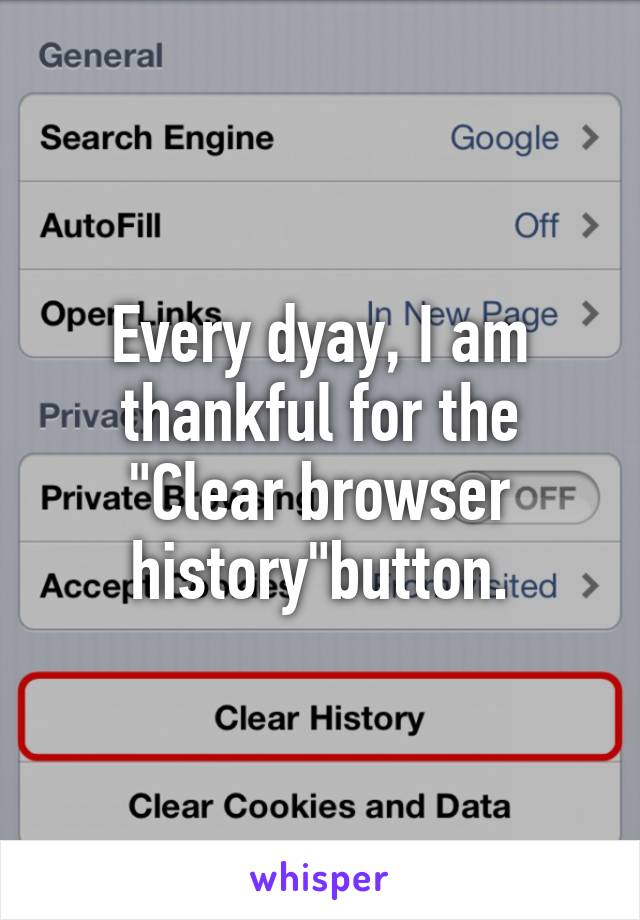 """Every dyay, I am thankful for the """"Clear browser history""""button."""