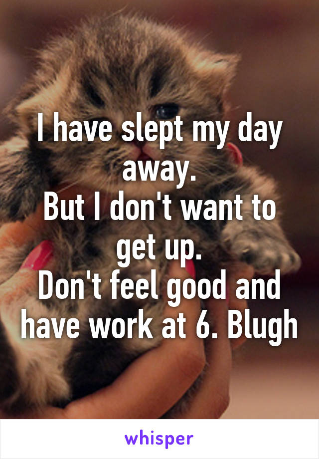 I have slept my day away. But I don't want to get up. Don't feel good and have work at 6. Blugh