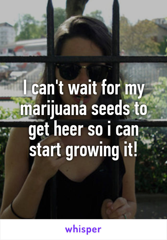 I can't wait for my marijuana seeds to get heer so i can start growing it!