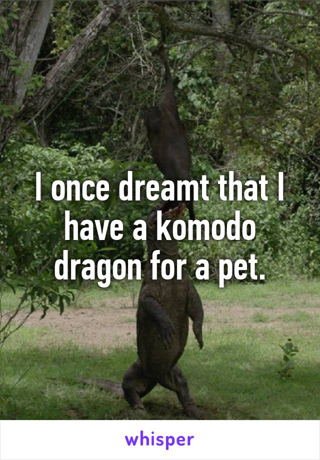 I once dreamt that I have a komodo dragon for a pet.