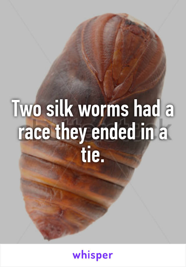 Two silk worms had a race they ended in a tie.