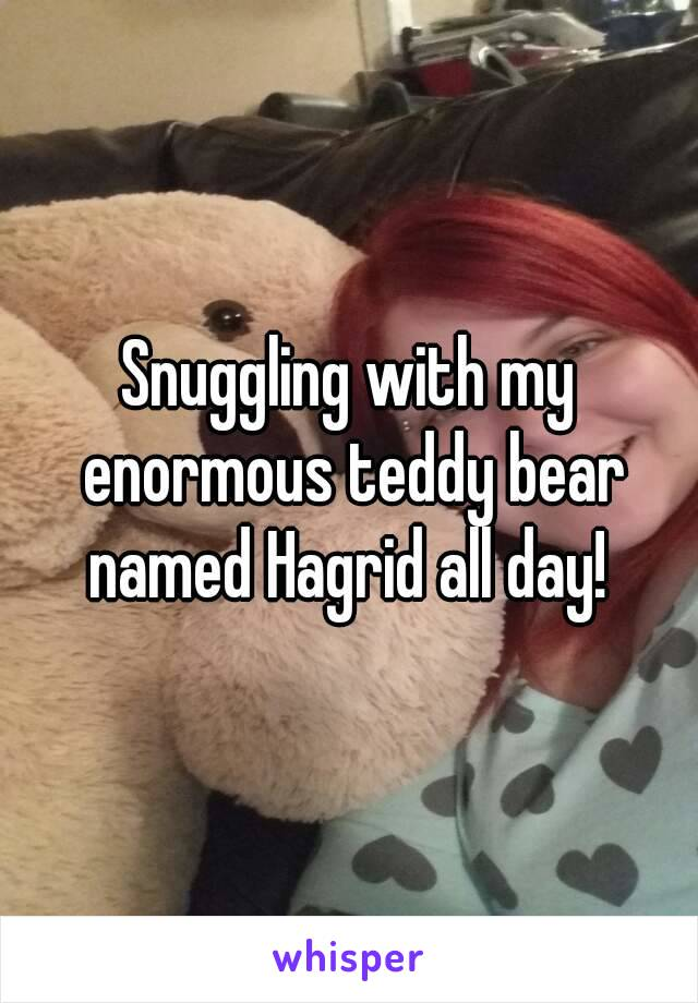 Snuggling with my enormous teddy bear named Hagrid all day!