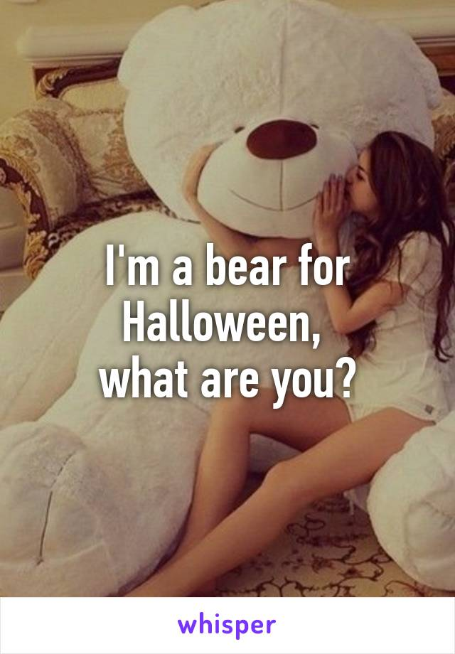I'm a bear for Halloween,  what are you?