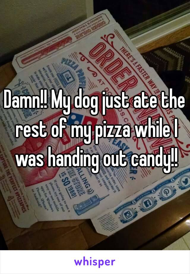 Damn!! My dog just ate the rest of my pizza while I was handing out candy!!