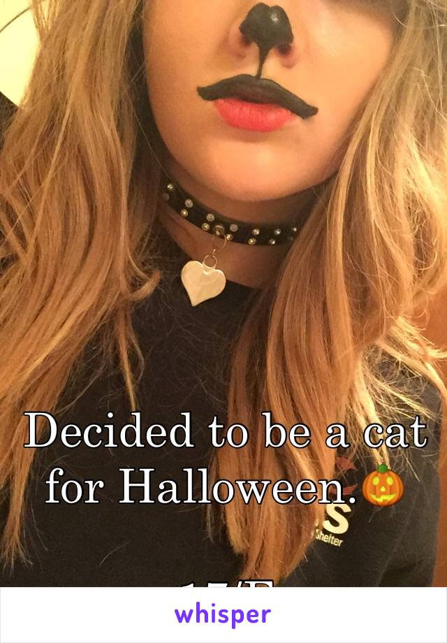 Decided to be a cat for Halloween.🎃  17/F
