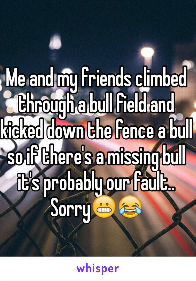 Me and my friends climbed through a bull field and kicked down the fence a bull so if there's a missing bull it's probably our fault.. Sorry😬😂