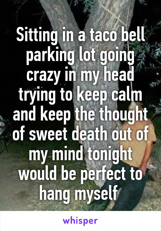 Sitting in a taco bell parking lot going crazy in my head trying to keep calm and keep the thought of sweet death out of my mind tonight would be perfect to hang myself