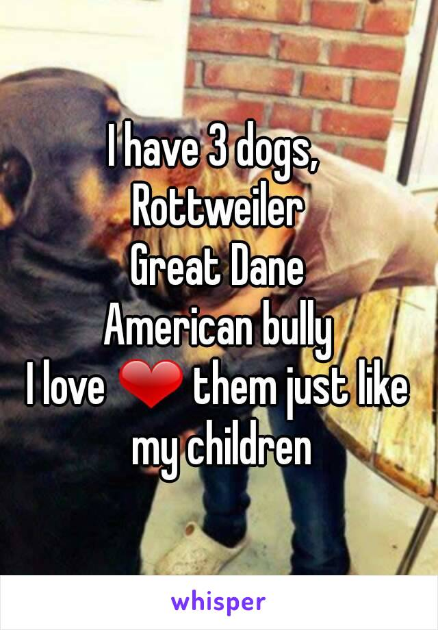 I have 3 dogs,  Rottweiler Great Dane American bully I love ❤ them just like my children