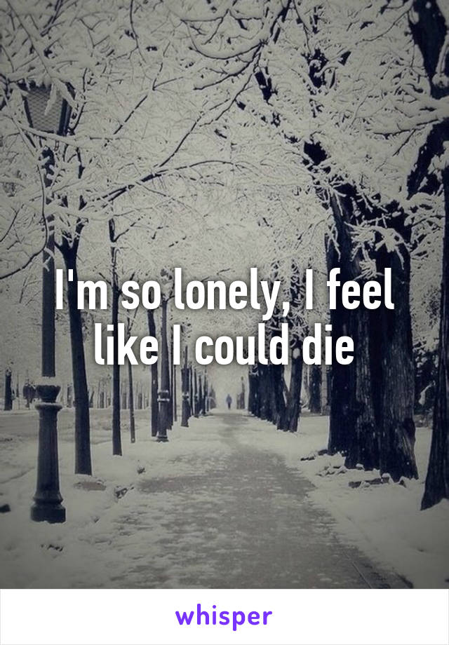 I am so lonely i could die