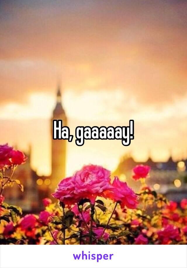 Ha, gaaaaay!