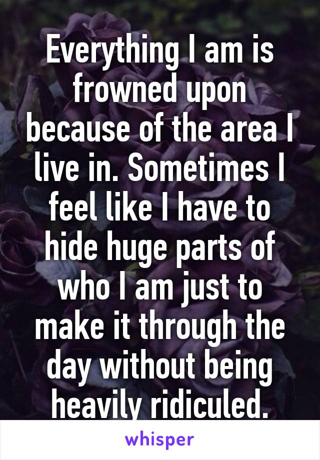 Everything I am is frowned upon because of the area I live in. Sometimes I feel like I have to hide huge parts of who I am just to make it through the day without being heavily ridiculed.